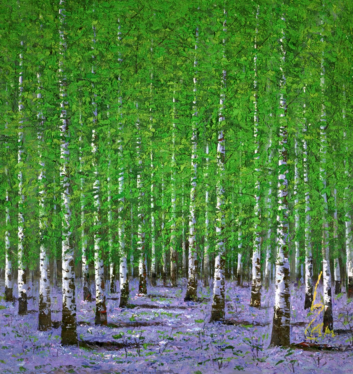 Between the Birch Trees II
